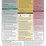 Infographic: 4 Key Publishing Paths