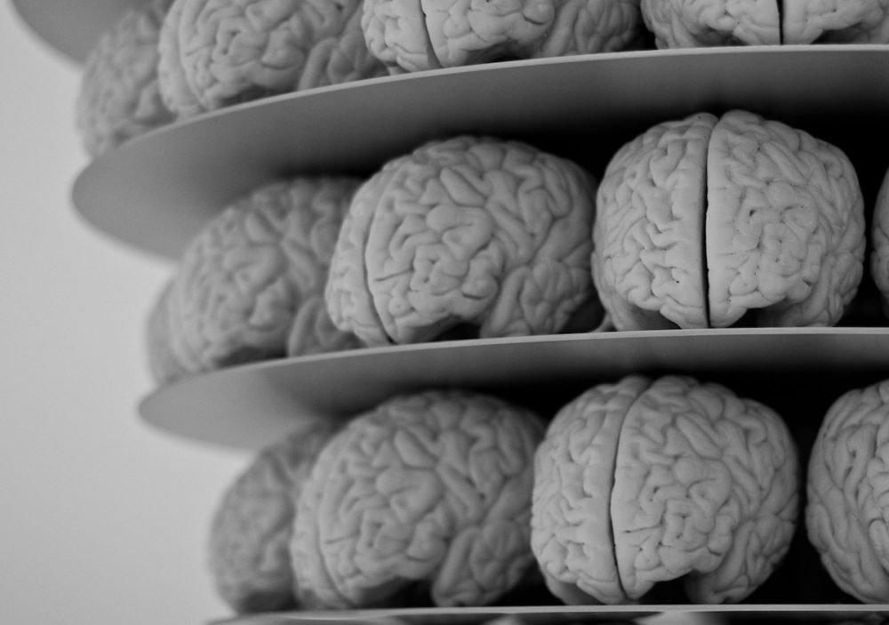 Image: sculptures of human brains, arranged in tiers on circular platforms