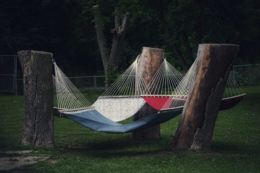 Image: three tree stumps in a triangle, supporting hammocks