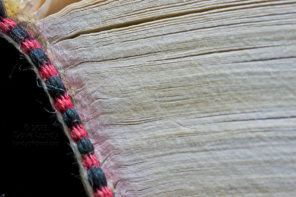 Book Printing 101: What You Need to Know Before Approaching a Printer